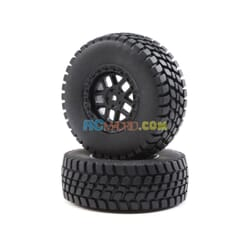 Alpine Wheel and Tire Mounted (2)  BR